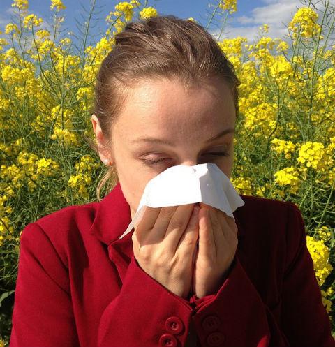 14406 Будьте здоровы: способы борьбы с аллергией, о которых вы не знали