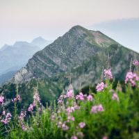 10 причин поехать в горы летом