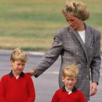 Принцы Уильям и Гарри: «Мы сказали маме: пока, до скорого!»