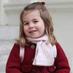 36711 Принцесса Шарлотта: как дочь Кейт Миддлтон и принца Уильяма очаровала людей во всем мире