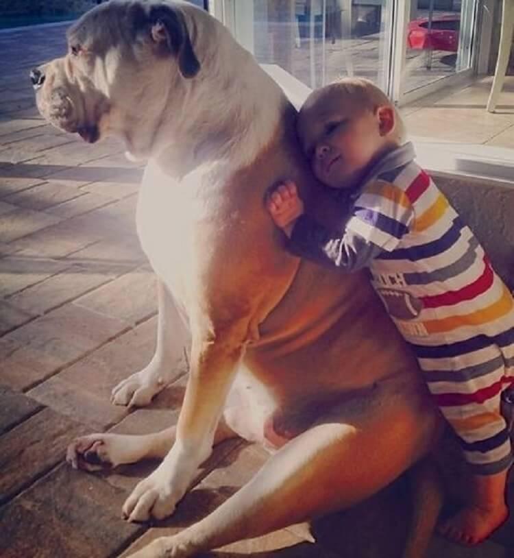 Родители думают, что детям не нужны животные. Только взгляните на эти снимки!