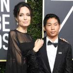 44115 Анджелина Джоли сказала своему сыну Паксу, что Брэд Питт был против его усыновления