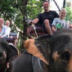 44445 Активные пробежки, прогулки на слонах и острые блюда: Алексей Навальный с семьей отдыхает в Таиланде