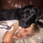 50312 Женщина проснулась от того, что пес ее стягивал с кровати. Он буквально силой потащил ее в комнату сына…