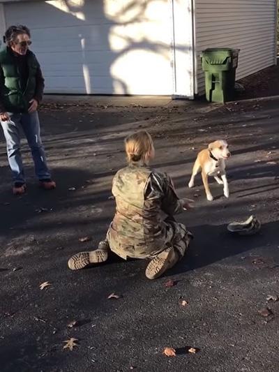 Трогательные кадры встречи хозяйки со своей собакой после 2-х лет разлуки