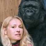 55632 Невероятный эксперимент с гориллой, которая почти стала человеком