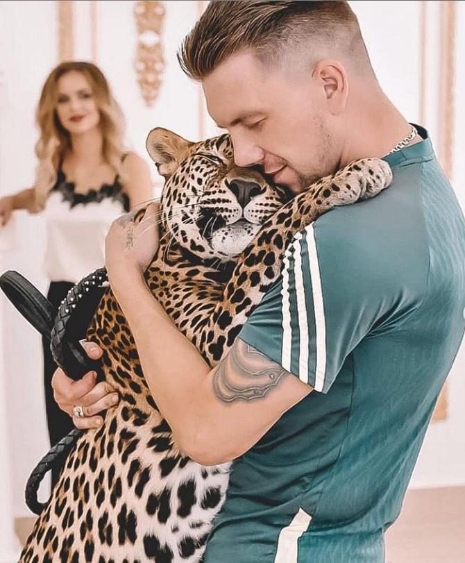 54215 Парень выкупил больного детеныша леопарда из зоопарка. Теперь этот красавец живет у него дома