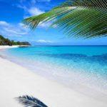 56116 Сверхъестественные пляжи, в существование которых трудно поверить