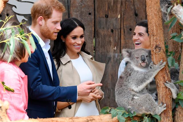 Принц Гарри и Меган Маркл во время тура по Австралии