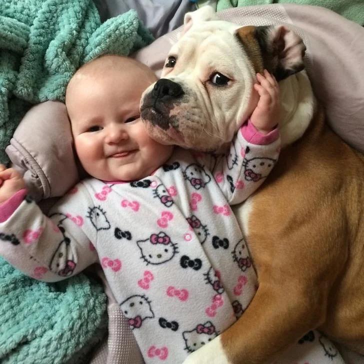 59464 Все еще сомневаетесь, что вашему ребенку необходимо домашнее животное?