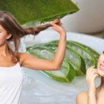 63609 Сок алоэ – универсальное и доступное средство для лица и для волос