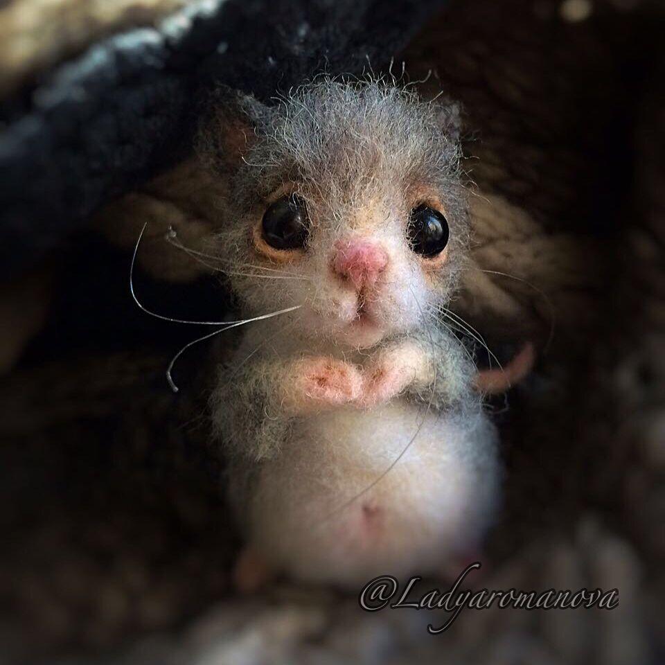 70237 Художница Анна Романова создает очень милых войлочных животных. Вы только посмотрите на этих очаровашек