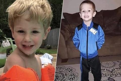 70577 В лесу спасатели обнаружили потерявшегося мальчика, ребенок уверяет, что ему помог выжить медведь