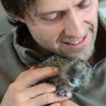 90189 Ветеринар спас крошечного ежонка, а тот изменил всю его жизнь