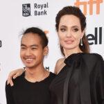 96286 Сын Анджелины Джоли и Брэда Питта Мэддокс дал показания в суде против отца