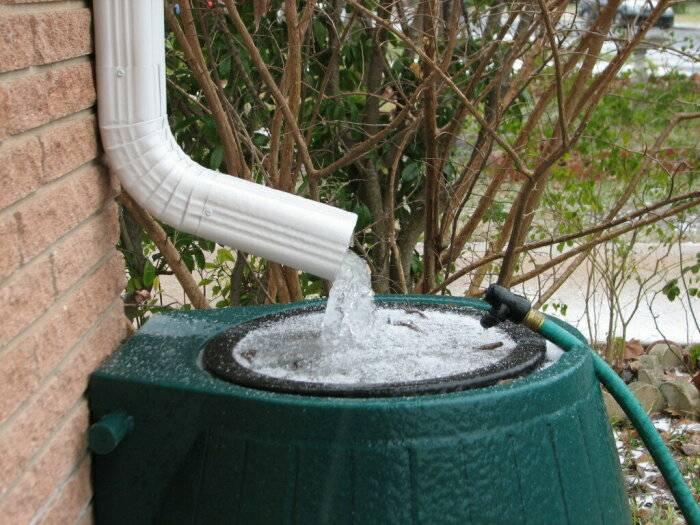 Почему сбор дождевой воды в США запрещен и является незаконным