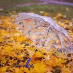 101310 Какой зонт выбрать на осеннее ненастье и не пожалеть